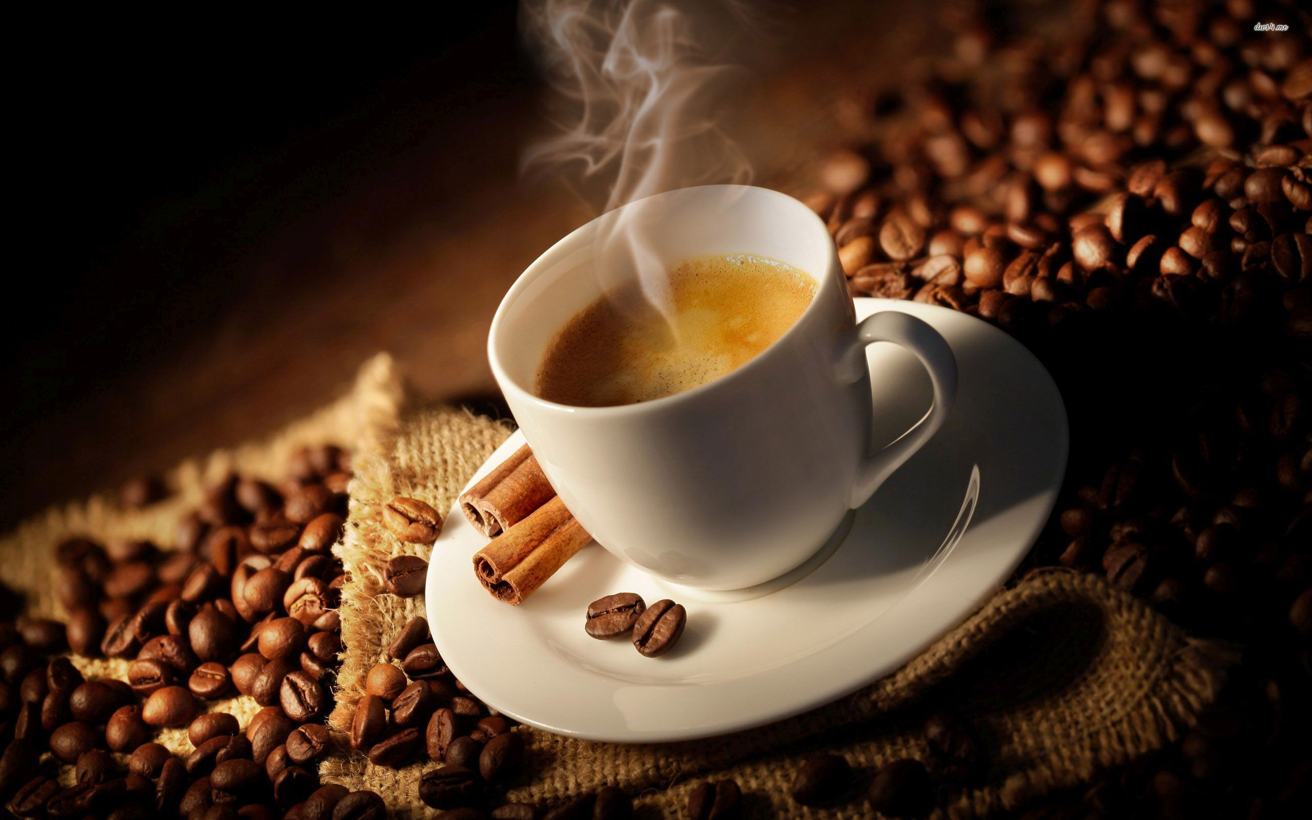 Time-tested Ways To Coffee Equipment Suppliers
